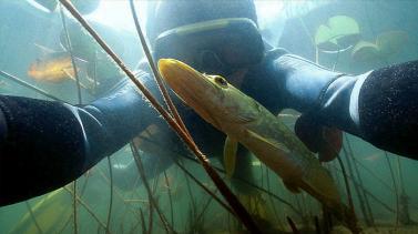 Michel Loup, photographe-randonneur aquatique